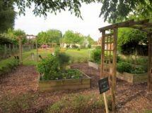 jardin-aromates2