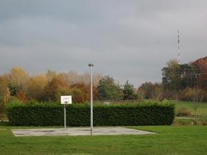 basket-etang
